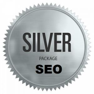 Silver Seo Plan