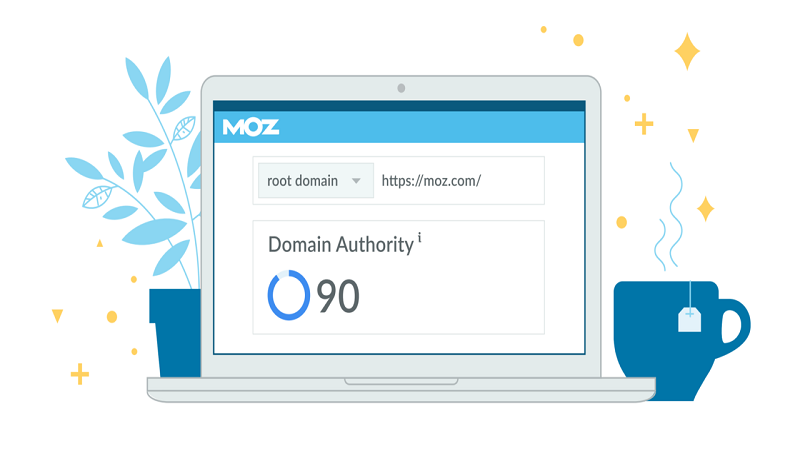 What Does MOZ Domain Authority Mean ?
