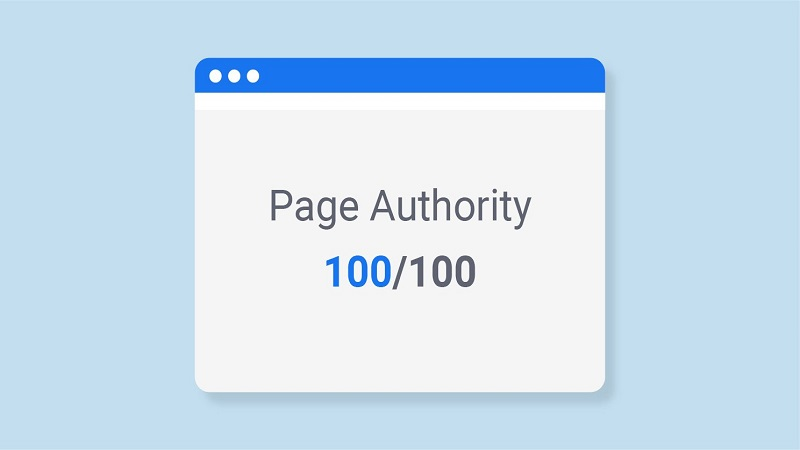 What Does MOZ Page Authority Mean ?