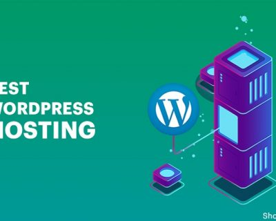 How WordPress Hosting Works